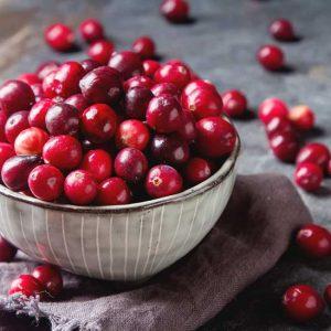 cranberries-101-732x549-thumbnail